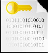 2N NetStar TAPI licence + Outlook plugin 1 uživatel